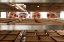 Preparazione fette biscottate